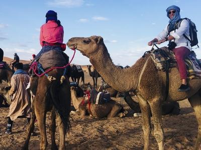 morocco-camel-trek